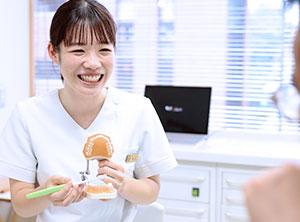 歯磨きの仕方について歯の模型を使って解説してる女性歯科衛生士