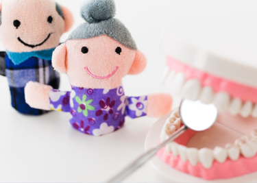 年代ごとに残っている歯の本数の推移