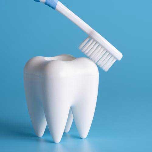 歯ブラシと歯